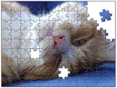 格安 ジグソーパズル風画像